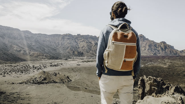 Environmentally friendly man with a backpack mountains