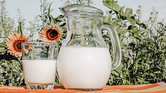 most sustainable milk alternatives jar and cup of milk in a field