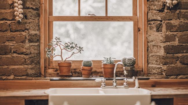 Eco-friendly house window with plants