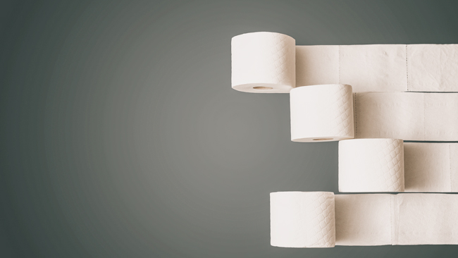 rolls of sustainable toilet paper in a row