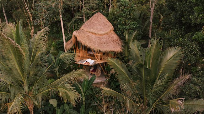 Eco-hotel in a forest