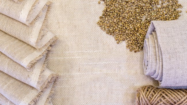 hemp fabric and seeds